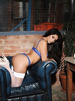 Charlotte Springer Model - British Glamour Girl Tease Gallery
